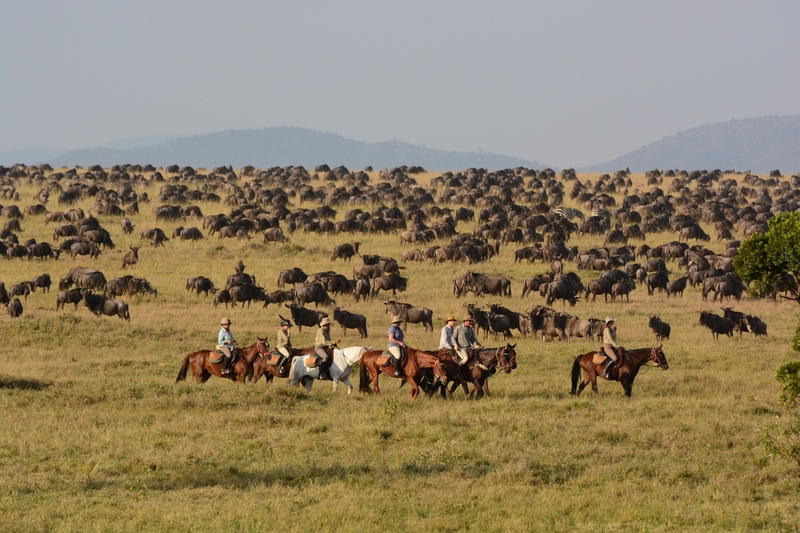 Wildebeest Migration and Horseback Riding on safari with Safaris Unlimited Africa in Kenya