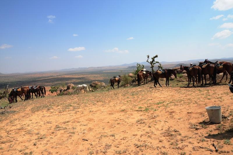 Horseback Safaris in Laikipia Riding on Safari with Safaris Unlimited Africa Wildlife Experience in Kenya
