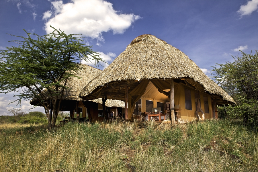Safaris Unlimited Africa - Lewa Safari Camp Kenya