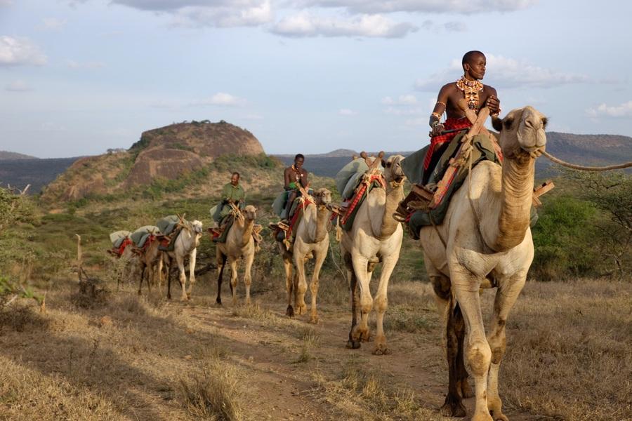 Ol Malo Laikipia Kenya Safaris Unlimited Africa