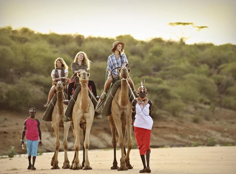 Activities at Sasaab Riding on Camels with Safaris Unlimited Africa, in Kenya