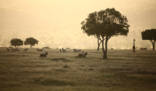 horseback safaris, kenya, africa, safari, wildlife, safaris unlimited